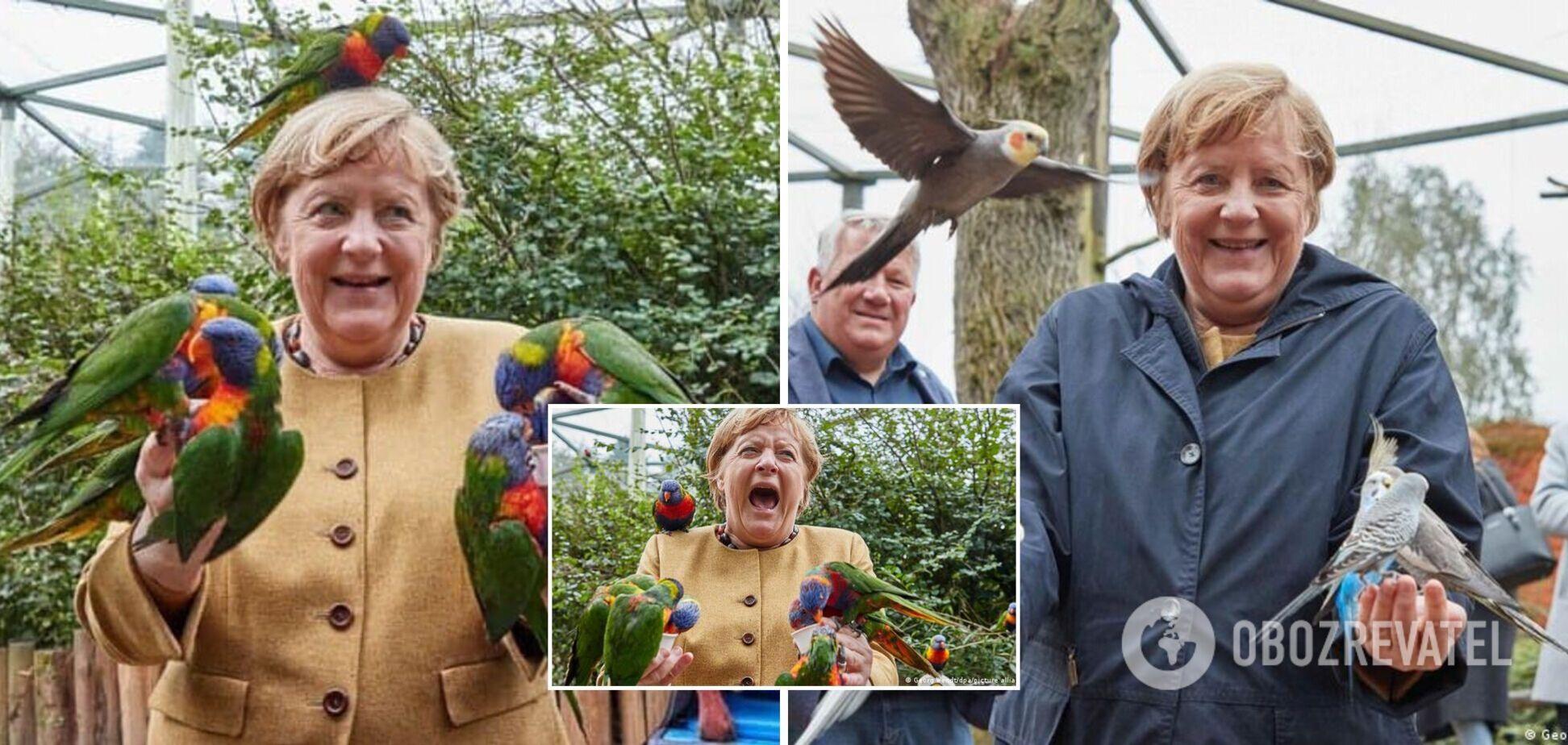 У мережі стали вірусними фото канцлера ФРН Меркель з папугами в пташиному парку