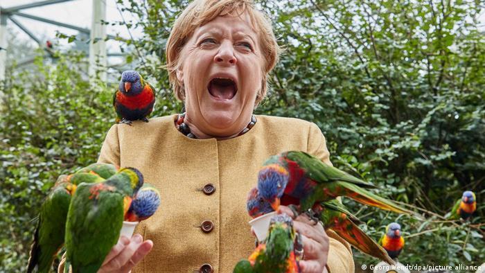 Канцлер зробила емоційне фото зі своїми пернатими друзями