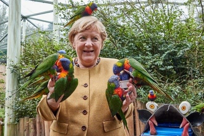 Фото Меркель з веселковими лорикетами стало хітом мережі